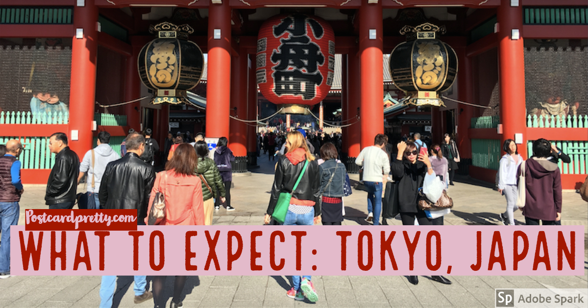 What to Expect in Tokyo Japan