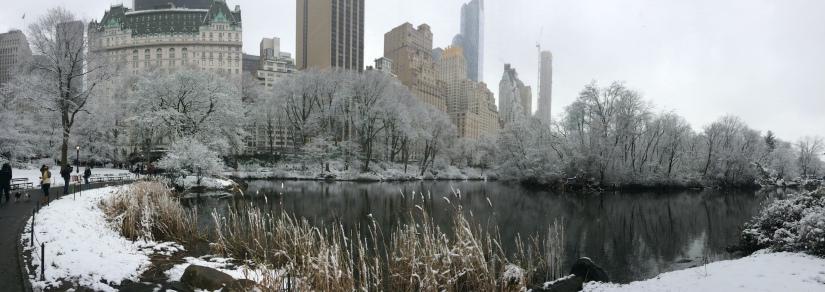 New York, USA   Postcardpretty.com